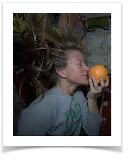 Astronaut Karen Nyberg on board ISS and a fresh grapefruit
